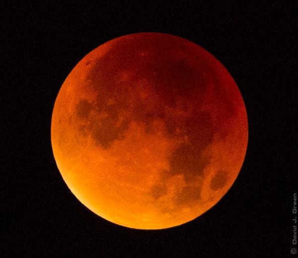 Lunar eclipse by david j. green