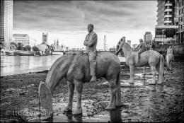 Horse sculptures at Vauxhall.