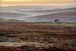 Dawn on the Moors