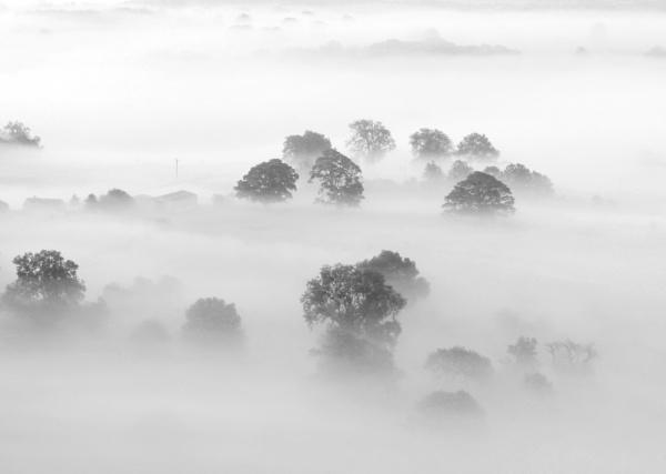 Morning Mists by Nigeyboy