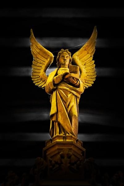 Angel by xwang