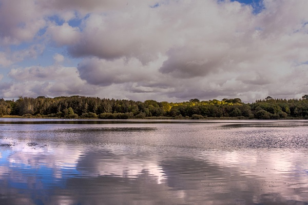 reflections by Doug1