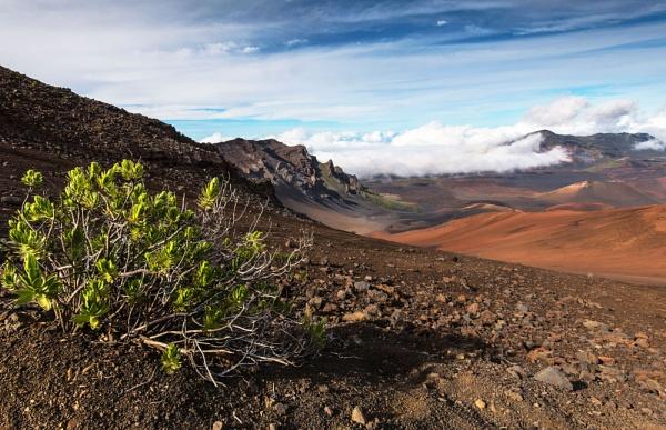 Haleakala Crater by Trevhas