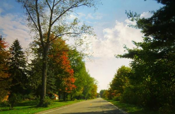 Michigan Autumn by doerthe