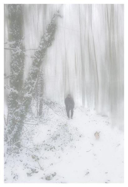 Walking the dog by deavilin