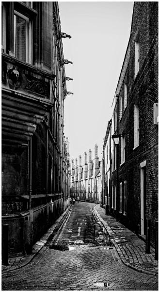 the street by dazm