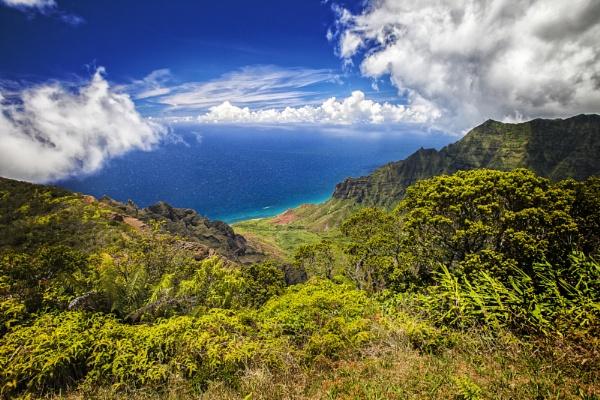 Kalalau Overlook, Waimea, Kauai by SylP