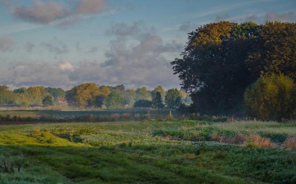 Autumn Morning by Gillken