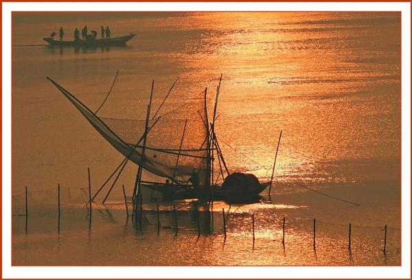 Golden Morning by prabhusinha