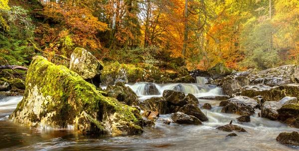 Autumn, River Braan by Mstphoto