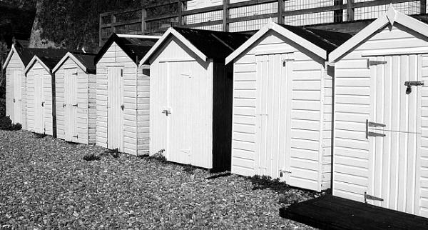 Beech huts by aazzaa