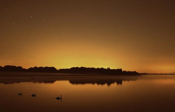 Hanningfield Reservoir, Essex by petach