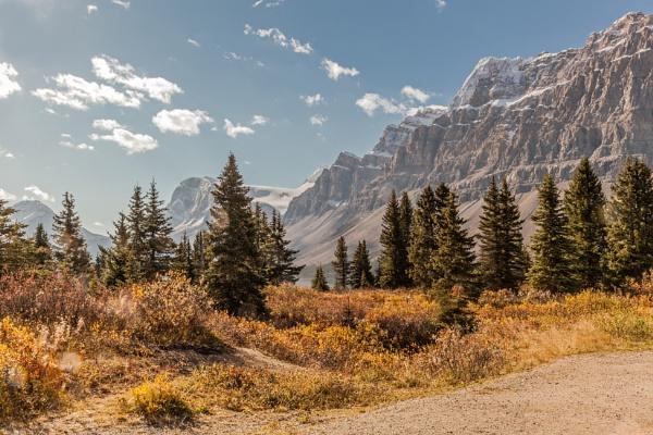Crowfoot Mountain and Glacier by pdunstan_Greymoon