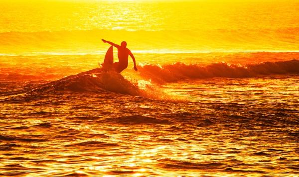 Surfs Up !! by Trevhas