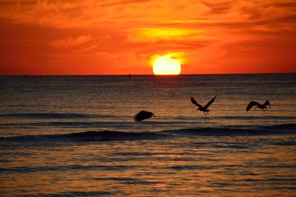 Sunset at Siesta Key. by jimlynch8
