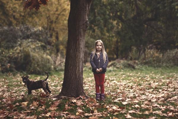 Autumn garden by Sigita