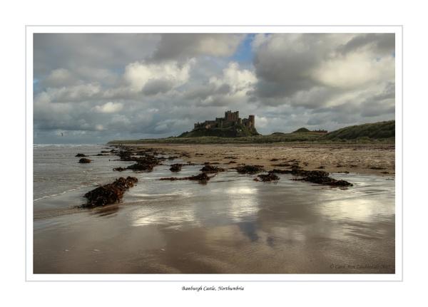 Bamburgh Castle, Northumbria by CarolAnnLauderdale
