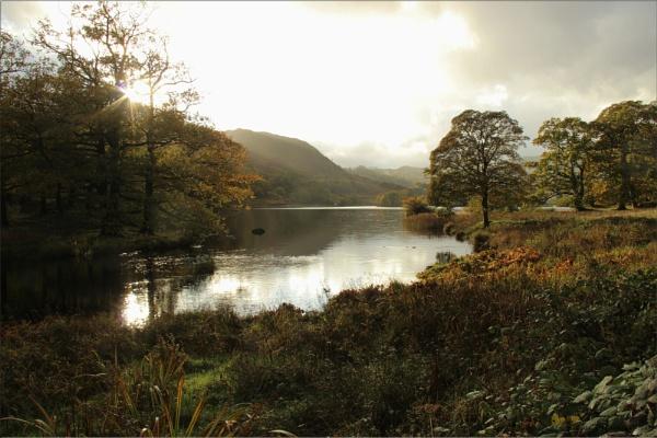 Rydal Water, Lake District by CarolAnnLauderdale