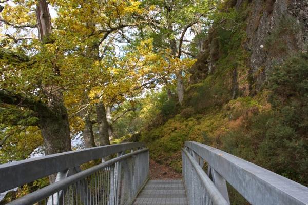 Balmaha Autumnal Colours by digital_boi