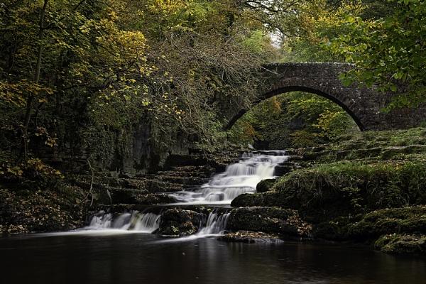 Autumnal Walden Beck by Fletcher8