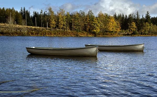 Autumn at Loch Rusky by Irishkate