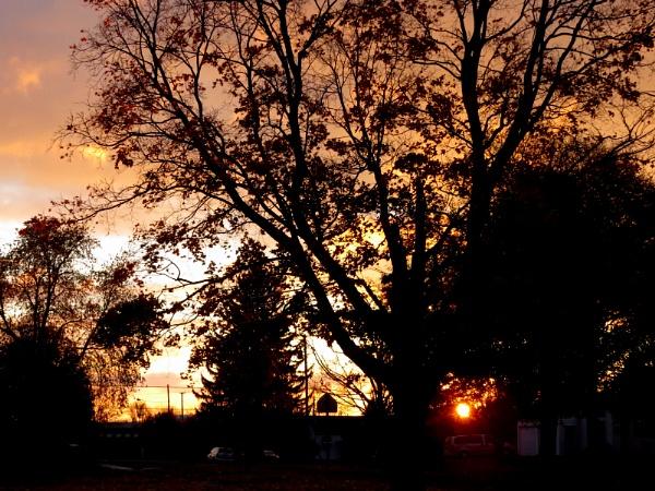Good morning, world! by doerthe