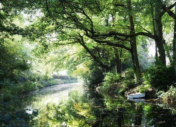 Basingstoke canal by Earthwatcher