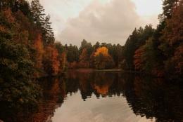 Mallard Pike Pond