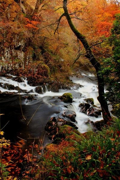 Autumn at Swallow Falls by Bluemoon97