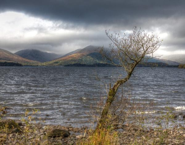 Balmaha looking across Loch Lomond by digital_boi
