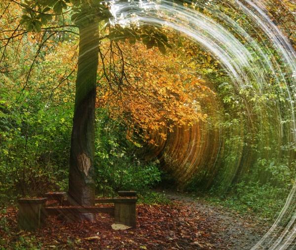 Autumn - scored a bullseye? by jonlonbla