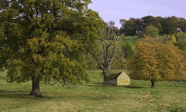 Cotswold Barn by SandraKay
