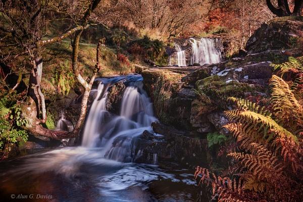 Autumnal Blaen Y Glyn by Tynnwrlluniau