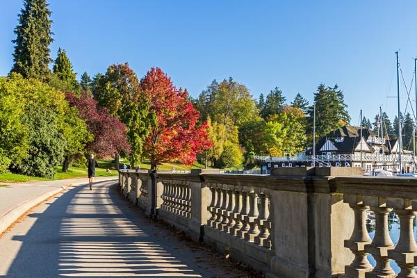 Stanley Park, Vancouver by pdunstan_Greymoon