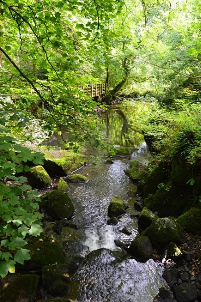 Foot path in Llangefni by netta1234