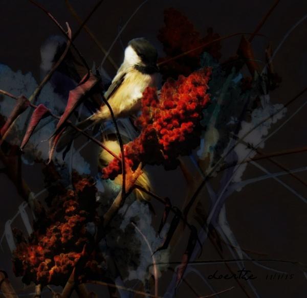 A Chickadee Day by doerthe