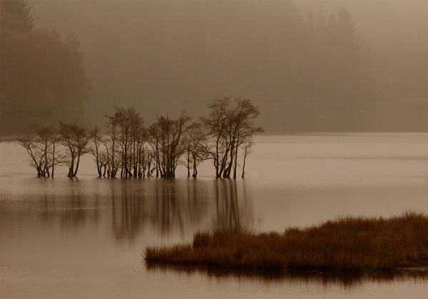 Misty Loch Katrine by Coracre