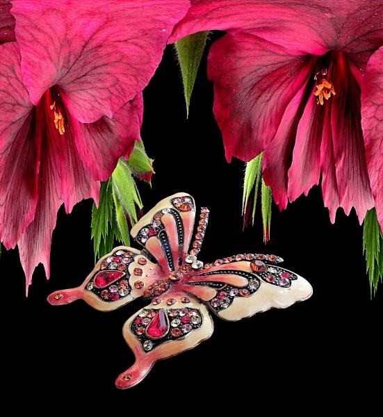 Butterfly Fantasy 11 by pamelajean