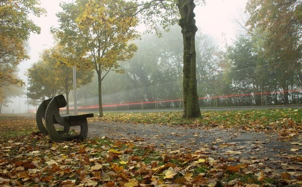 Misty Autumn Morning by jonlonbla