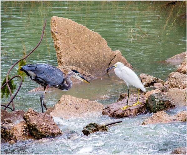 Fisherfolk by GeorgeP
