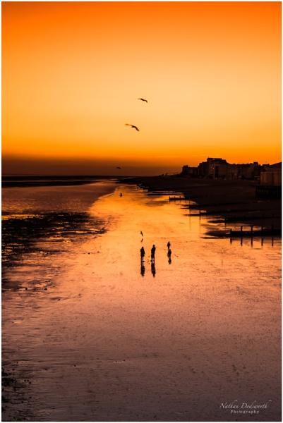 Sunset & Seagulls by NDODS