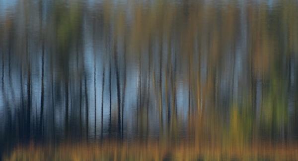 autumn reflects by senn