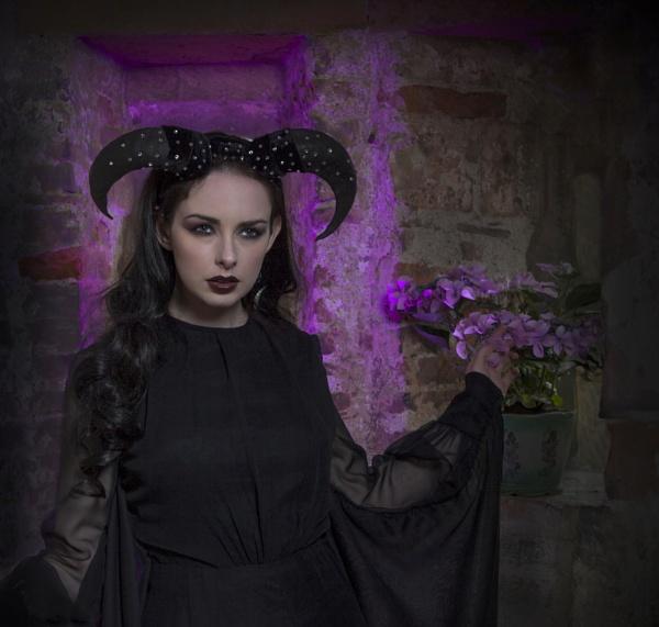 Dark Beauty by harryw