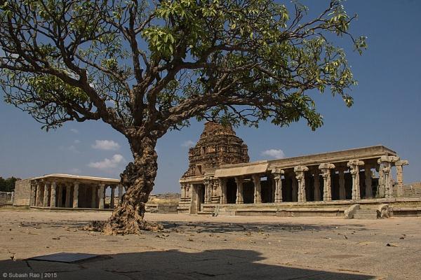 Vittala Temple Tree by subashcr