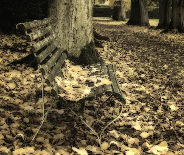 Fallen by dawnstorr