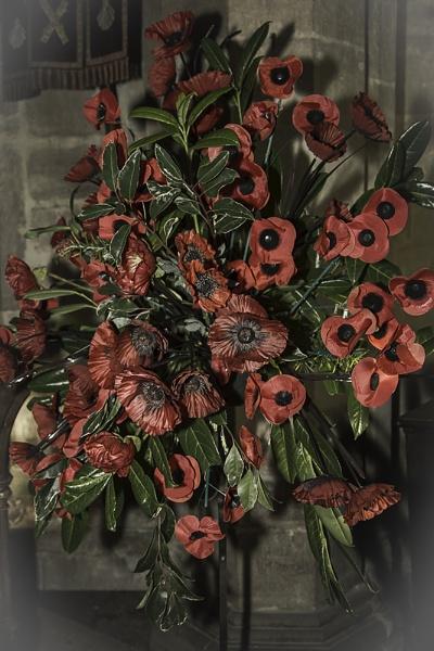 Poppies by GordonLack