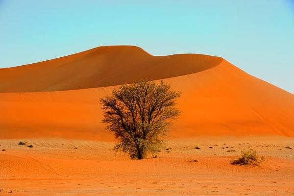 Orange Sand Dune in the  Namib Naukluft desrt by pf