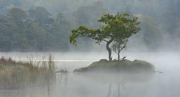 Rydal Mist by Stumars