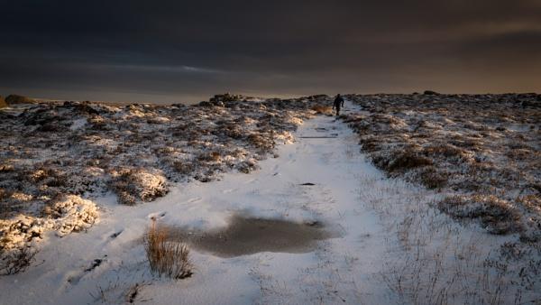 A winters walk by ArtyArt