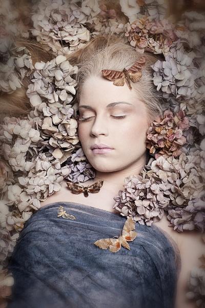 Moth by Carri